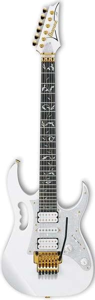SD's Guitar